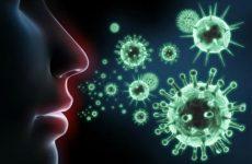 Как защитить иммунитет и что на него влияет