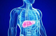 Напряженность иммунитета к гепатиту B
