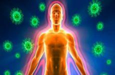 Как быстро и просто укрепить иммунитет организма