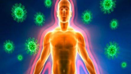 Как укрепить ослабленный иммунитет организма