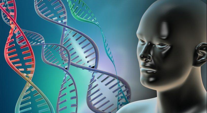Исследования клеточного звена иммунитета